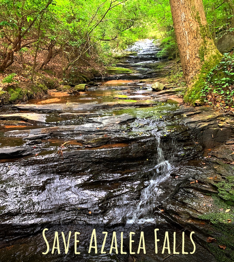 Council threatens 'Darth Vader Scenario' in developer's bid to destroy Azalea Falls, an ecological habitat of statewide significance.