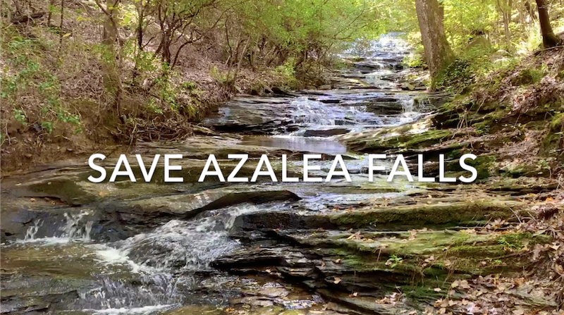 Save Raleigh's Azalea Falls