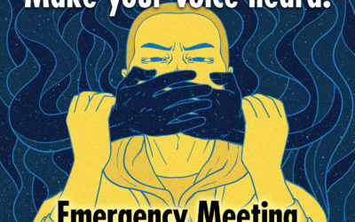 Emergency Public Meeting: Join with Us to Protect Your Vote